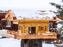 Vogelhaus Bauanleitung Erfahrungen