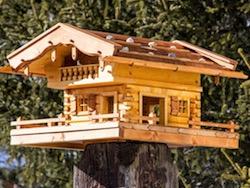 anleitung vogelhaus bauen vogelhaus bauen anleitung bauplan vogelhaus bauen vogelhaus selber. Black Bedroom Furniture Sets. Home Design Ideas