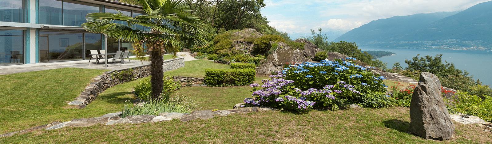 Vogelhaus Hintergrund 5