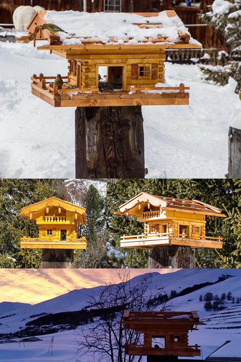 Vogelhaus bauen Erfahrungsbericht Vogelhaus.com